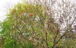 Διακόσμηση κήπων Πάσχας ζωηρόχρωμα αυγά Πάσχας Στοκ Εικόνα