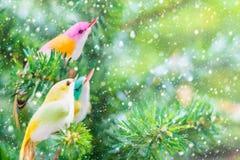Διακόσμηση και διακόσμηση Χριστουγέννων πουλιών στο δέντρο με την επίδραση χιονιού Στοκ εικόνα με δικαίωμα ελεύθερης χρήσης