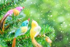 Διακόσμηση και διακόσμηση Χριστουγέννων πουλιών στο δέντρο με την επίδραση χιονιού Στοκ εικόνες με δικαίωμα ελεύθερης χρήσης