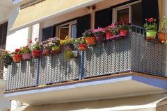 Διακόσμηση λουλουδιών στο μπλε μπαλκόνι, dfferent είδος λουλουδιών, Στοκ εικόνες με δικαίωμα ελεύθερης χρήσης