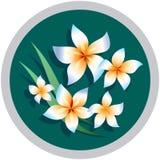 διακόσμηση λουλουδιών &s Στοκ Εικόνες