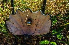 Διακόσμηση μετάλλων σε ένα κιγκλίδωμα σε ένα χωριό παραλιών, συμβολική EL Στοκ φωτογραφία με δικαίωμα ελεύθερης χρήσης