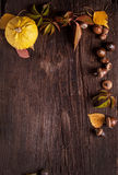 Διακόσμηση με τα φύλλα κολοκύθας και φθινοπώρου Στοκ φωτογραφίες με δικαίωμα ελεύθερης χρήσης