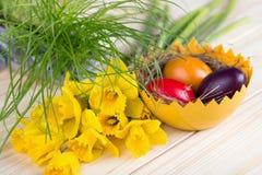 Διακόσμηση Πάσχας με τα ζωηρόχρωμα αυγά Πάσχας με τα daffodils και την πράσινη χλόη Στοκ Εικόνες