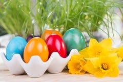 Διακόσμηση Πάσχας με τα ζωηρόχρωμα αυγά Πάσχας με τα daffodils Στοκ εικόνα με δικαίωμα ελεύθερης χρήσης