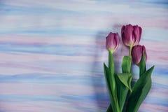 Διακόσμηση Πάσχας με τα χρώματα κρητιδογραφιών Στοκ εικόνα με δικαίωμα ελεύθερης χρήσης