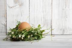 Διακόσμηση Πάσχας, φωλιά Πάσχας με το καφετί αυγό Στοκ φωτογραφία με δικαίωμα ελεύθερης χρήσης
