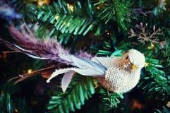 Διακόσμηση πουλιών Στοκ φωτογραφία με δικαίωμα ελεύθερης χρήσης