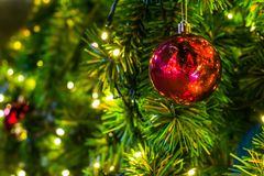 Διακόσμηση στη ημέρα των Χριστουγέννων με την κόκκινη σφαίρα Στοκ Εικόνα