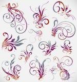 διακόσμηση συλλογής floral ελεύθερη απεικόνιση δικαιώματος