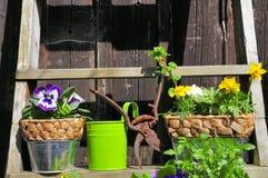 διακόσμηση της άνοιξη κηπ&omicron στοκ εικόνες