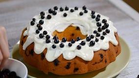 Διακόσμηση του κέικ σφουγγαριών με τη μαύρη σταφίδα φιλμ μικρού μήκους