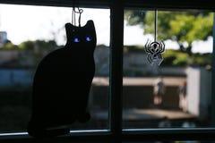 Διακόσμηση του παραθύρου της γάτας και της αράχνης Στοκ εικόνες με δικαίωμα ελεύθερης χρήσης