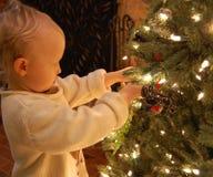 Διακόσμηση του χριστουγεννιάτικου δέντρου Στοκ εικόνα με δικαίωμα ελεύθερης χρήσης
