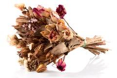 Διακόσμηση των ξηρών λουλουδιών - τριαντάφυλλα Στοκ φωτογραφίες με δικαίωμα ελεύθερης χρήσης