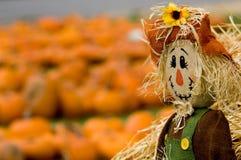 διακόσμηση φθινοπώρου Στοκ φωτογραφίες με δικαίωμα ελεύθερης χρήσης