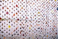 Διακόσμηση φιαγμένη από πολλά ζωηρόχρωμα κρεμώντας κοχύλια Στοκ φωτογραφία με δικαίωμα ελεύθερης χρήσης