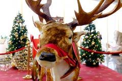 Διακόσμηση Χριστουγέννων, ελάφια Στοκ φωτογραφία με δικαίωμα ελεύθερης χρήσης