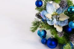Διακόσμηση Χριστουγέννων με τα μπλε poinsettias μεταξιού, ασημένιο πεύκο con Στοκ φωτογραφίες με δικαίωμα ελεύθερης χρήσης