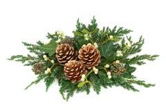 Διακόσμηση Χριστουγέννων με τους χρυσούς κώνους πεύκων Στοκ Φωτογραφία