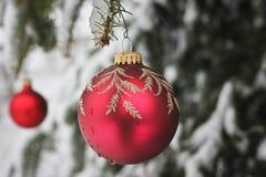 Διακόσμηση Χριστουγέννων σε έναν καλυμμένο χιόνι κλάδο πεύκων Στοκ Εικόνες