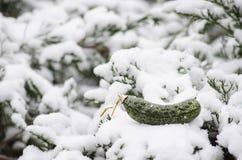 Διακόσμηση Χριστουγέννων τουρσιών Χριστουγέννων στο χιόνι Στοκ Εικόνες