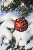 Διακόσμηση 10 χριστουγεννιάτικων δέντρων στοκ εικόνες