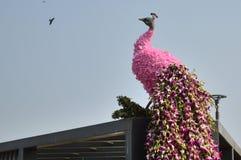 Διακόσμηση Peacock με τα λουλούδια Στοκ εικόνα με δικαίωμα ελεύθερης χρήσης
