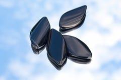 διαμάντι χαντρών onyx Στοκ φωτογραφίες με δικαίωμα ελεύθερης χρήσης