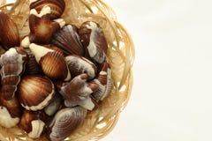 Διαμορφωμένα κοχύλια θάλασσας σοκολάτας καραμέλα Στοκ Φωτογραφίες