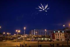 Διαμορφωμένες εργασίες πυρκαγιάς κρίνων λουλούδι Στοκ φωτογραφίες με δικαίωμα ελεύθερης χρήσης