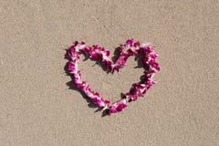 Διαμορφωμένη καρδιά ορχιδεών λουλουδιών παραλία άμμου θάλασσας γιρλαντών άσπρη Στοκ Φωτογραφίες
