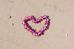Διαμορφωμένη καρδιά ορχιδεών λουλουδιών παραλία άμμου θάλασσας γιρλαντών άσπρη Στοκ Εικόνες