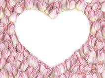 Διαμορφωμένη καρδιά τουλίπα 10 eps Στοκ Εικόνες