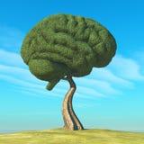 Διαμορφωμένο εγκέφαλος δέντρο ελεύθερη απεικόνιση δικαιώματος