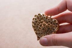 Διαμορφωμένο καρδιά αντικείμενο υπό εξέταση στοκ εικόνες με δικαίωμα ελεύθερης χρήσης