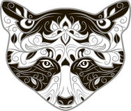 Διαμορφωμένο κεφάλι του ρακούν στοκ εικόνες