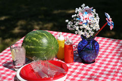 διαμορφωμένο παλαιό picnic στοκ εικόνες