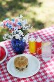διαμορφωμένο παλαιό picnic στοκ εικόνα με δικαίωμα ελεύθερης χρήσης