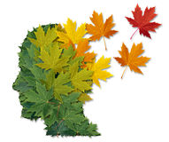 Διανοητική ασθένεια και Alzheimers ελεύθερη απεικόνιση δικαιώματος