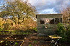 Διανομή που αγαπά το φυτικό κήπο Στοκ φωτογραφία με δικαίωμα ελεύθερης χρήσης