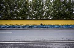 Διανομή του ποδηλάτου Στοκ Φωτογραφία