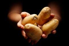 διανομή τροφίμων Στοκ Φωτογραφίες