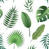 Διανυσματικά άνευ ραφής τροπικά φύλλα σχεδίων Στοκ εικόνα με δικαίωμα ελεύθερης χρήσης