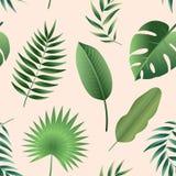 Διανυσματικά άνευ ραφής τροπικά φύλλα σχεδίων Στοκ φωτογραφίες με δικαίωμα ελεύθερης χρήσης