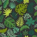 Διανυσματικά άνευ ραφής τροπικά φύλλα σχεδίων Στοκ εικόνες με δικαίωμα ελεύθερης χρήσης