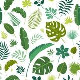 Διανυσματικά άνευ ραφής τροπικά φύλλα σχεδίων Στοκ φωτογραφία με δικαίωμα ελεύθερης χρήσης