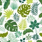 Διανυσματικά άνευ ραφής τροπικά φύλλα σχεδίων Στοκ Εικόνες