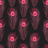 Διανυσματικά άνευ ραφής φτερά σχεδίων peacock Στοκ εικόνες με δικαίωμα ελεύθερης χρήσης