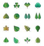 Διανυσματικά απλά εικονίδια φύλλων δέντρων που απομονώνονται Πράσινο κίτρινο φύλλωμα, τυποποιημένη συλλογή χορταριών στο καθιερών Διανυσματική απεικόνιση